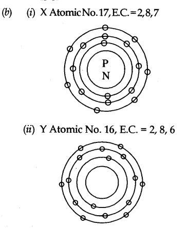 A Explain Bohr And Bury Rules For Distribution Of Electrons Into