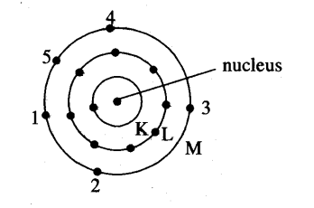 I write the postulates of bohr model of atom ii draw a sketch of i write the postulates of bohr model of atom ii draw a sketch of bohr model of an atom with atomic number 15 ccuart Gallery