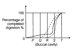 the graph below shows the progress of carbohydrate (------), protein  (-----) and fat (-----) digestion in the human alimentary canal