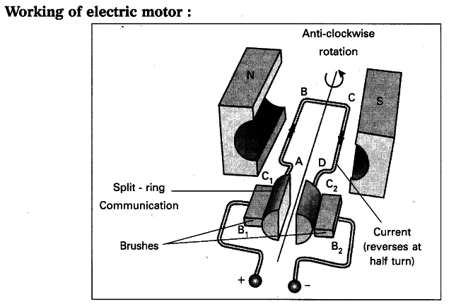 Explain the working of electric motor with a neat diagram - Class 10 ...