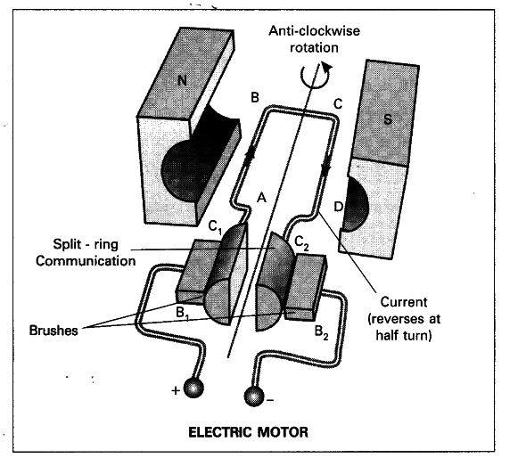 Draw A Neat Diagram Of Electric Motor  Name The Parts
