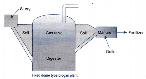 What is biogas? Describe the working of a biogas plant with