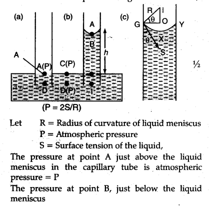 Derive The Formula For Rise Of Liquid In A Capillary Tube Ascent