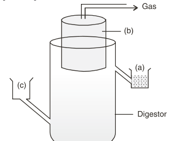 The diagram is that of a typical biogas plant - CBSE Class ...
