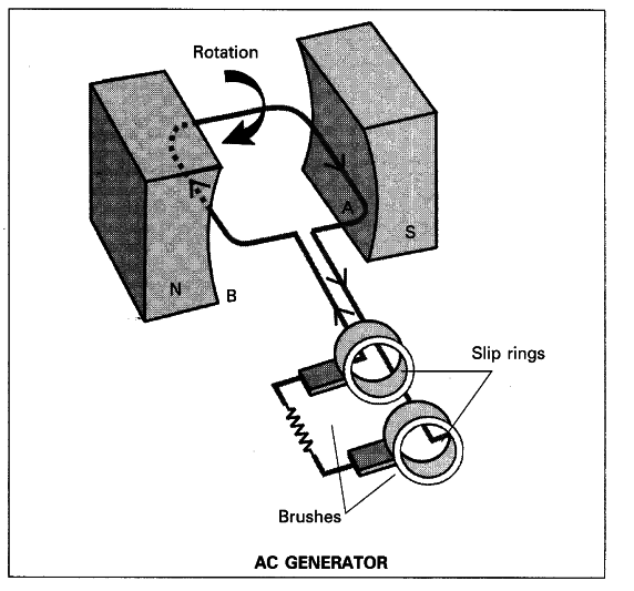 Draw A Neat Diagram Of An Ac Generator Class 10 Science Learn
