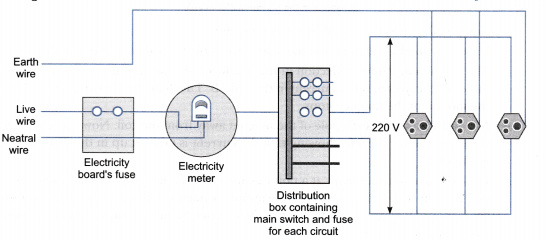 Draw an appropriate schematic diagram showing common domestic ...