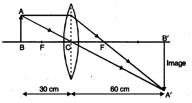 draw a labelled ray diagram to locate the image of an
