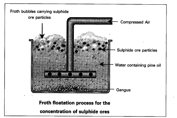 draw the diagram showing i  froth floatation  ii  magnetic
